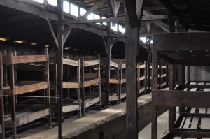 Beds in Auschwitz Birkenau